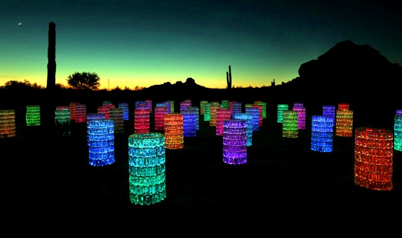 Bruce Munro: Sonoran Light at Desert Botanical Garden